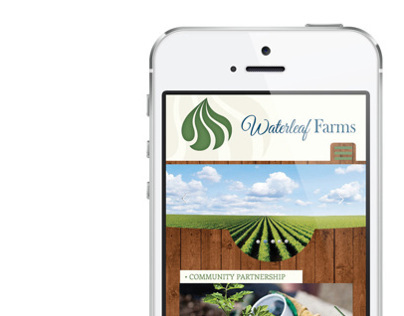 Waterleaf branding and responsive website
