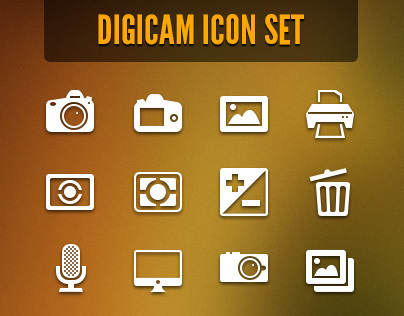 Digicam Vector Icon Set