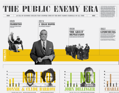 The Public Enemy Era