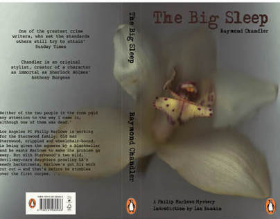 The Big Sleep, Book cover