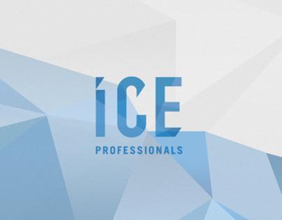 ICE Professionals LTD