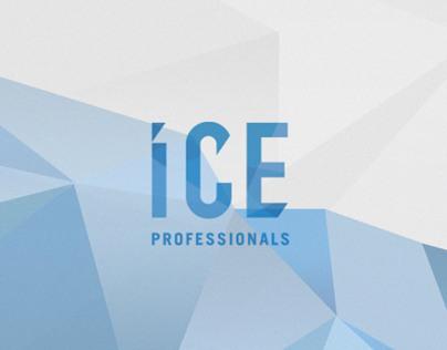 ICE Professionals LTD