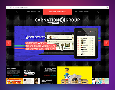 CarnationGroup website 2011