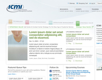 ICMI Website
