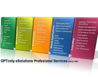 OPTinity eSolutions Professional Services