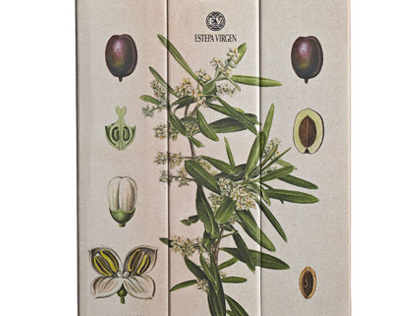 Estepa Virgen. Extra Virgin Olive oil packaging design