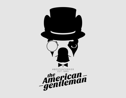 Boston Terrier: The American Gentleman