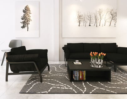 Black - white living room!