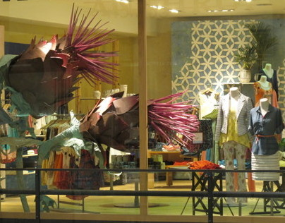 Window and Display Design