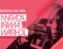 Collección Fortabat: Warhol's Polaroids Exhibition