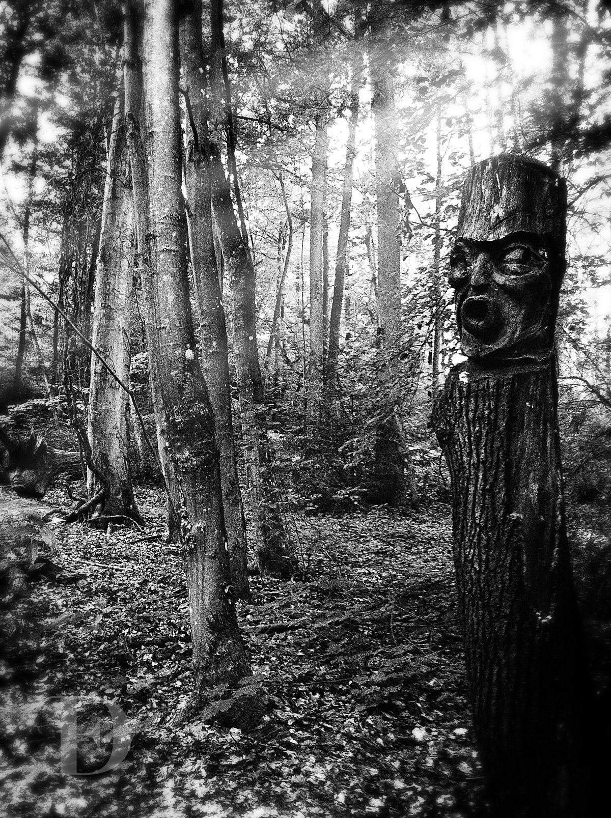 Mystical wood people