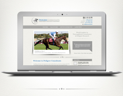 Website Re-design for No. 1 Consultant Firm
