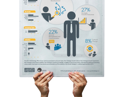 Chief Strategy Officer Survey | Infographic Series
