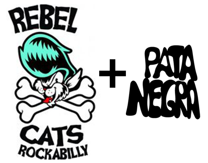 Rebel Cats Photos.