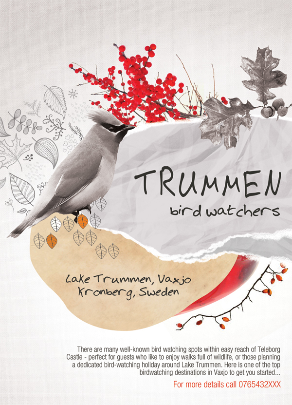 Lake Trummen Bird Watchers Poster