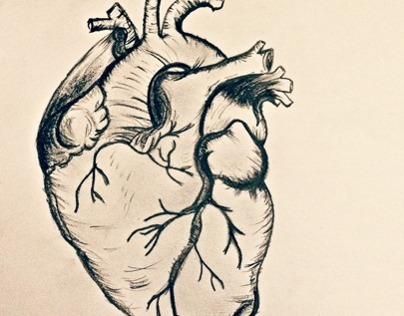 Body Part: Heart