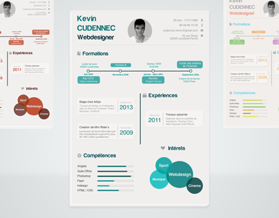 Infographic resume .PSD
