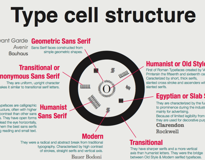 Type Cell Structure