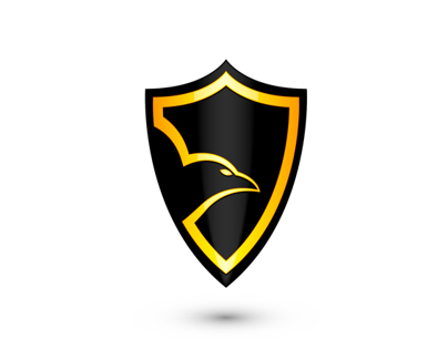 Raven Alarm Security Systems