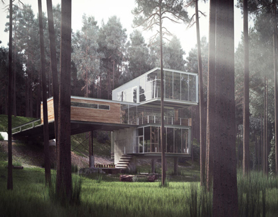 Architectural 3D Visualisation - Modern Cabin