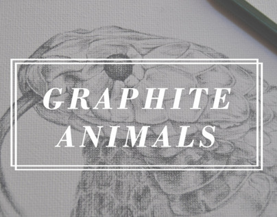 Graphite animals