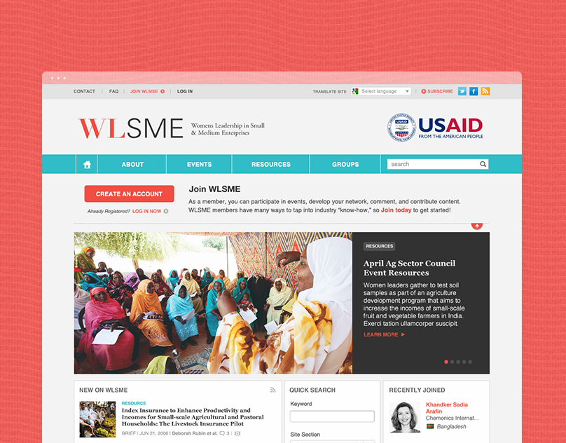 New Website Design for USAID's WLSME initiative