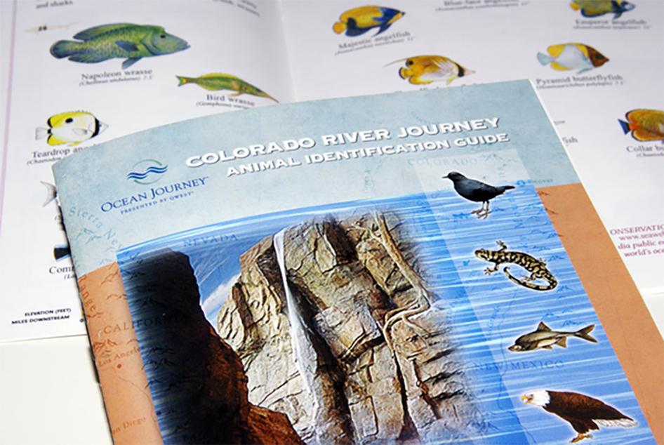 Ocean Journey Aquarium Animal ID Guide