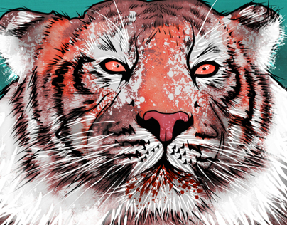 Vector & illustration: Tiger By Venc Design