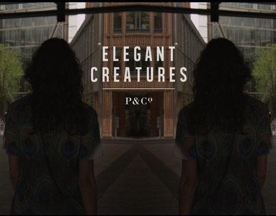 P&CO - Elegant Creatures Collection