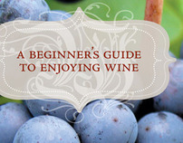 A Beginner's Guide to Enjoying Wine