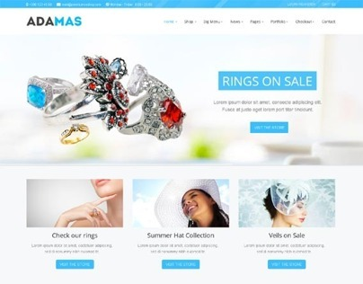 Adamas, Wordpress Best Ecommerce Business Theme
