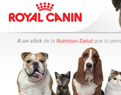 Mailing Royal Canin