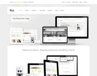 Bizoo, Premium WordPress Business Theme