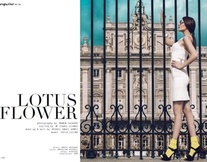 Lotus Flower for Superior Magazine