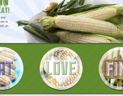 Amaize Sweet Corn Web Design