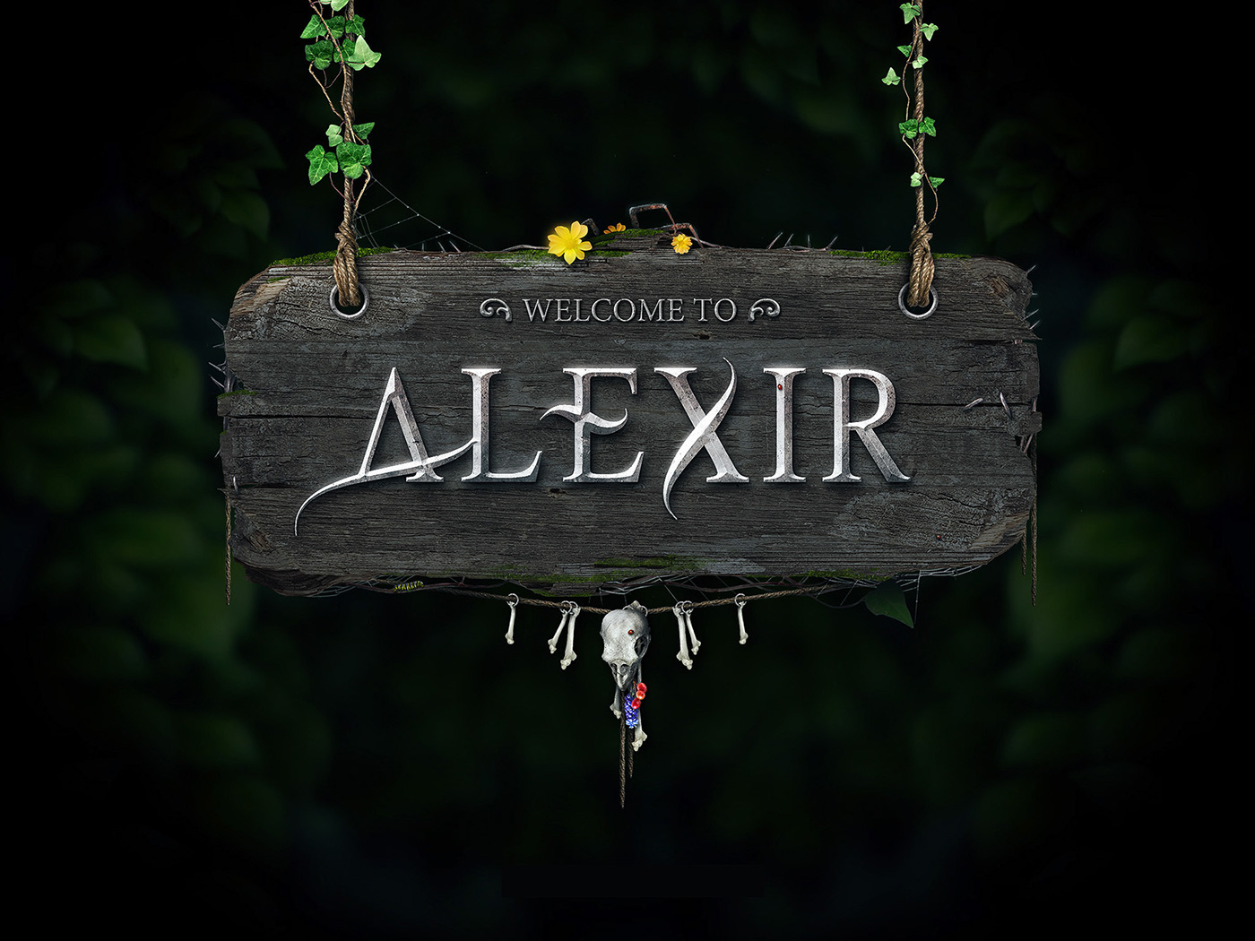 Welcome to Alexir