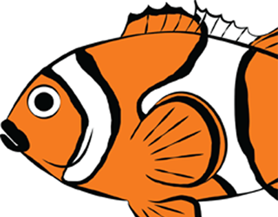 Clown Fish T-Shirt Project-Aquaculture