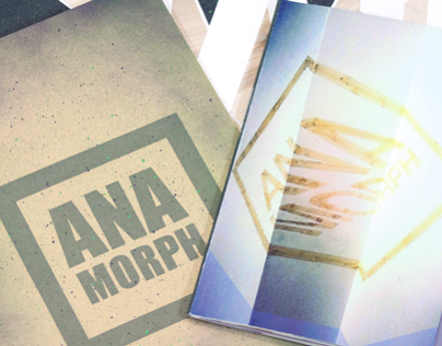 Visual Research - Anamorphosis