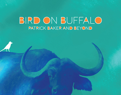 BIRD ON BUFFALO   CD Packaging