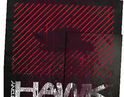 Tony Hawk | Kohls logo treatment