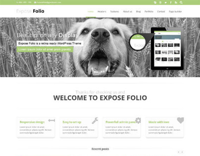 Expose Folio, Responsive WordPress Business Theme