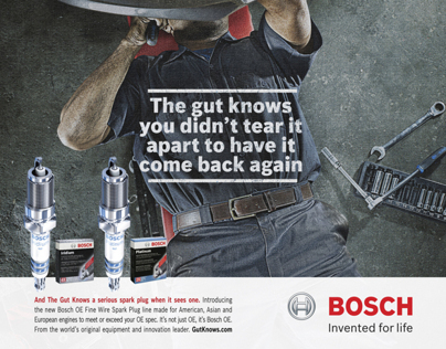BOSCH - The Gut knows
