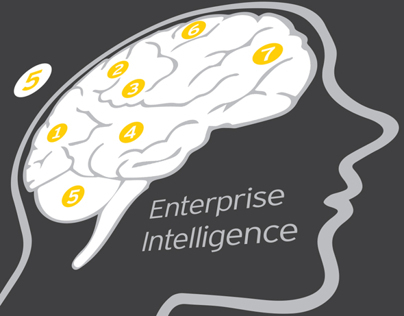 EY Enterprise Intelligence Infgraphic