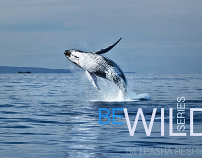BE WILD series | photo