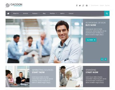 Cacoon, WordPress Responsive Business Theme