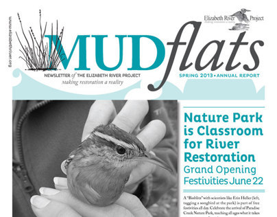 MUDflats Newsletter