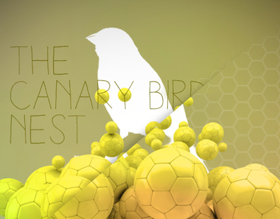 The Canary Bird Nest