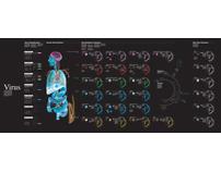 Virus, information chart