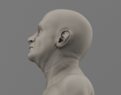 Mature male sculpt