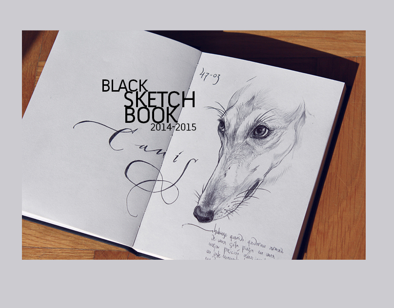 SKETCH BLACKBOOK 2014